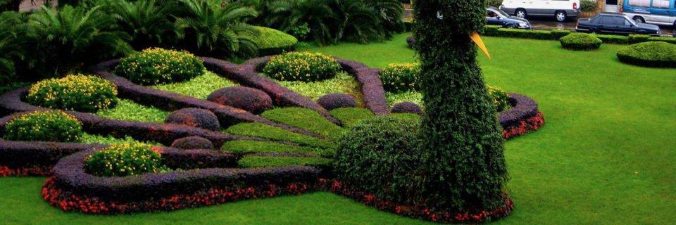 Дизайн и создание растительных насаждений